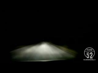 Лось выскочил на дорогу в Тоншаевском районе- Регион-52
