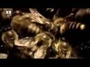 Тактика пчел против разведки шершней.
