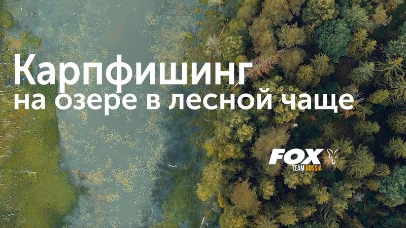 *** FOX TEAM RUSSIA *** Карпфишинг на озере в лесной чаще