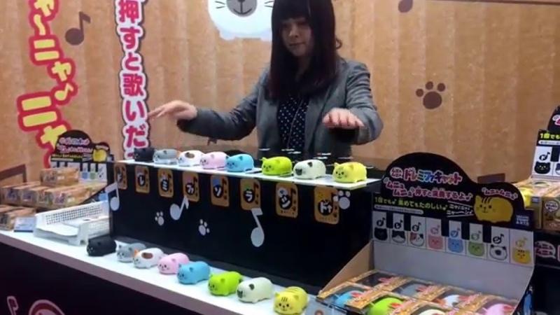 Doremifa Cat by Takara Tomy RAW VIDEO