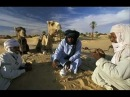 GNAWA D' écoute avec EL M3ALLEM BENAISSA ADRAR BOURDJ DAOUI STYLE BAMBARA