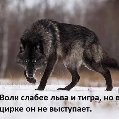 Виктор Монахов