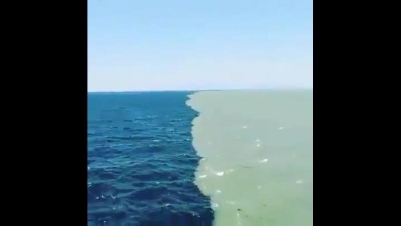 Линия где встречаются Атлантический океан и Тихий океан Они прикасаются но не смешиваются друг с другом Потому что там одна