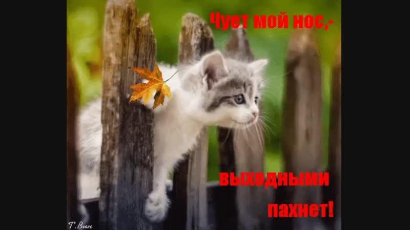 😍😍😍😏😏Чует мой нос, выходными пахнет👍👍😘😘❤️❤️❤️💕💕💕👄👄