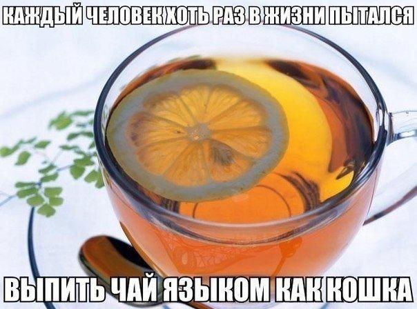 http://cs607326.vk.me/v607326505/5316/VZZ9NNpt4lU.jpg