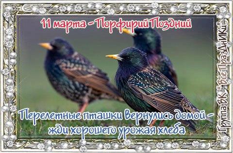 https://pp.userapi.com/c7003/v7003231/45921/qOiLtKVGjYk.jpg