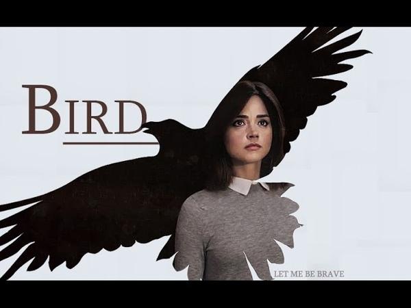 Doctor Who | Bird