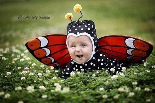 Самая обаятельная бабочка.