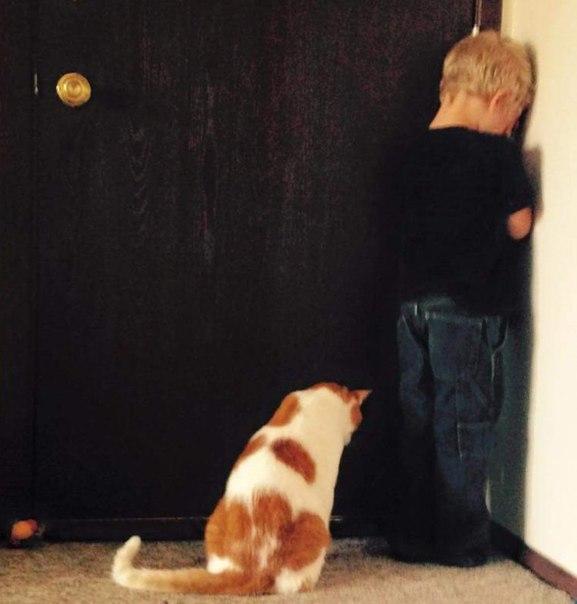 25 доказательств, что детям нужны домашние животные: ↪ Оба наказаны 😜