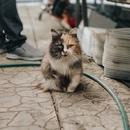 Игорь Пугач-Рапопорт фотография #28
