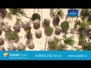 Доминикана_АВРТур. GRAND BAHIA PRINCIPE PUNTA CANA 5٭ Доминикана
