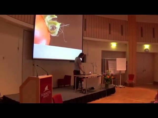 Harald Kautz Vella 2015 Impulse fuer die Neue Zeit