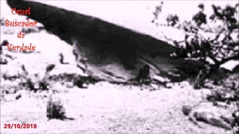 Documentos ultra secretos sobre OVNIs são vazados, e confirmam o acidente de Roswell!