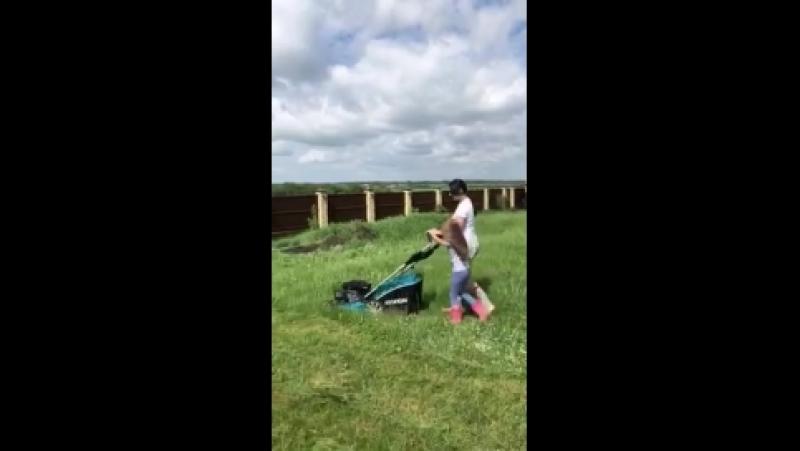 Газонокосилки Хендай - косят даже мокрую траву!