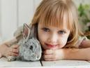 О чем говорят дети каких животных можно держать дома