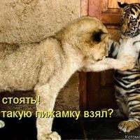 Азамат Байчурин, 17 марта , Николаев, id64462106