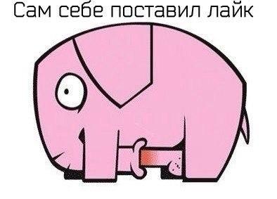 Могерини заявила о необходимости начать с Россией прямую дискуссию - Цензор.НЕТ 6146