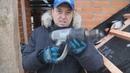 Монтаж керамической черепицы BRAAS Часть 4 Как лучше утеплить крышу Защита дымохода от влаги