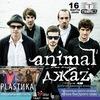 16 марта Animal ДжаZ и PLASTИКА в клубе Сфера Т