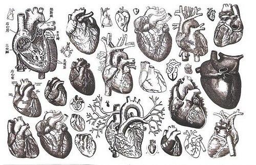 эскизы тату сердце: