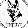 "КРОО ФСПС ""СИРИУС"""