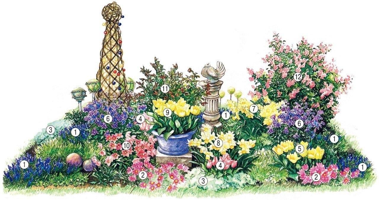 Клумбы с розами: с чем сочетаются, как оформить, схемы, фото 61