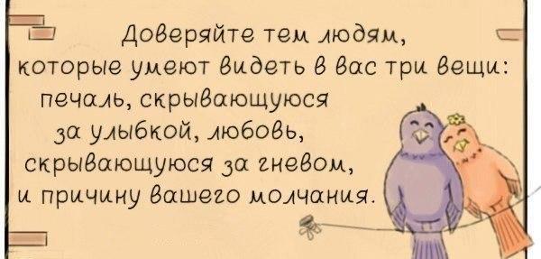 http://cs616131.vk.me/v616131567/8102/qfIrGS3o5cc.jpg
