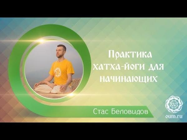 Практика хатха йоги для начинающих Станислав Беловидов