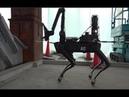 Spot Robot Testing at Construction Sites