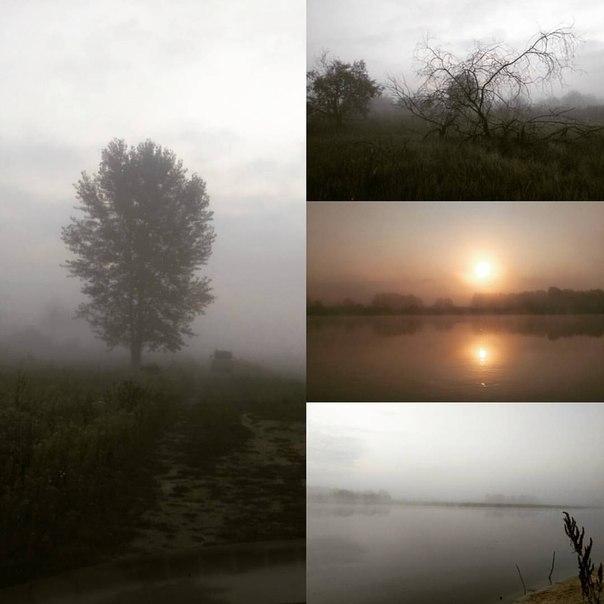 Скачать утро туманное mp3