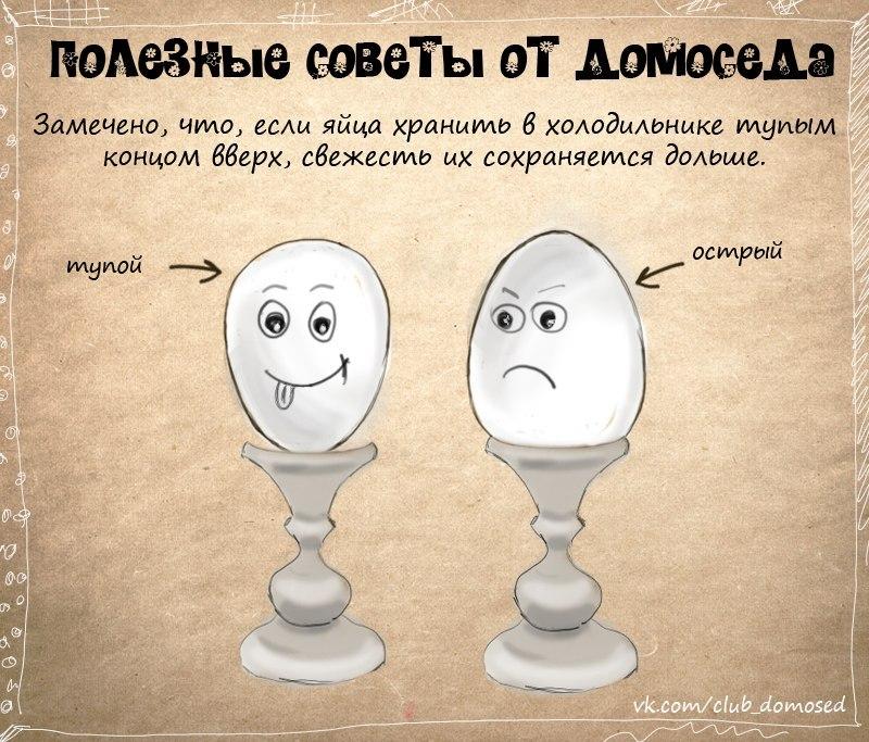 http://cs309529.userapi.com/v309529440/c64/PQwVoydk7TY.jpg