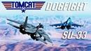 DCS F 14 Tomcat Vs Su 33 Dogfight PvP