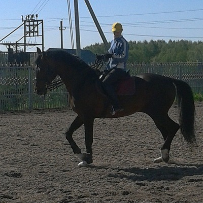 Александра Яковлева, 30 июня , Киев, id39145242
