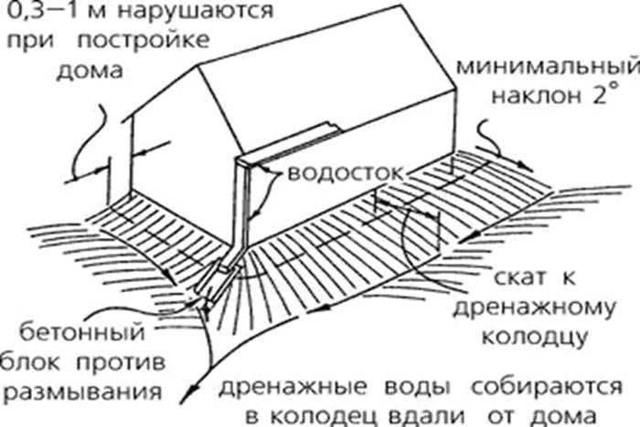 Фундамент и дренаж