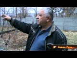 Ужасы Айдара: разрушенный посёлок Новосветловка в Луганской области