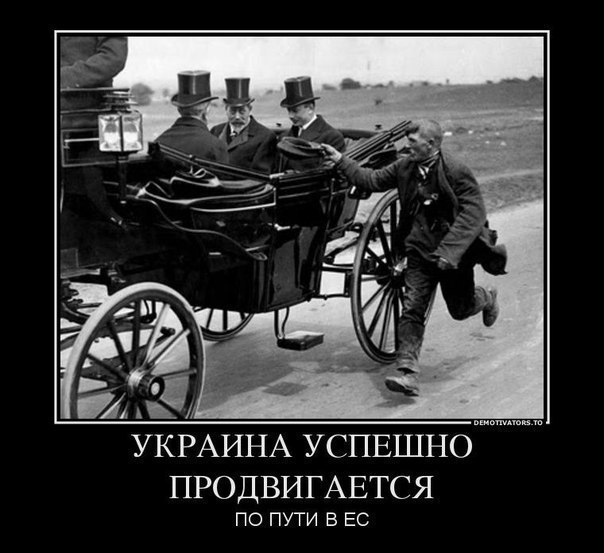 http://cs616119.vk.me/v616119331/3317/VC14TuJZNHc.jpg