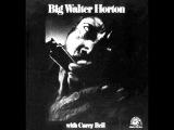 Careless Love - Big Walter Horton