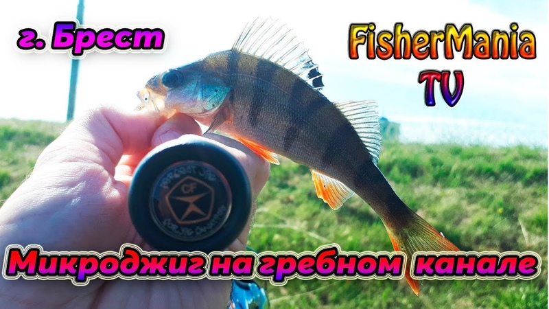 Брест Микроджиг на гребном канале FisherMania TV