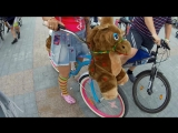 VideoGazeta - Рай для велосипедиста
