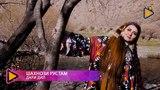 Шахнози Рустам - Дари дил 4K video | Shahnozi Rustam - Dari dil 2018