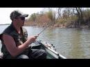Fish test Provokator Stilus