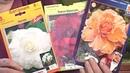 Удачная среда - выращиваем лилии и клубневые бегонии (Бийское телевидение)