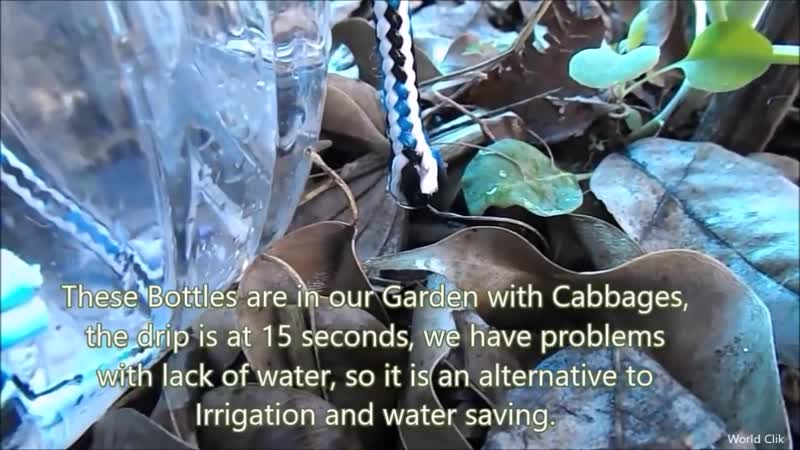 How to make Self Watering System for your Plants using waste Plastic Bottle and a Rope VDownloader