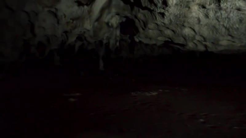 Пещера забытых снов Cave of Forgotten Dreams (2010) Вернер Херцог Документальный