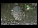 Охота на крокодила в Танзании