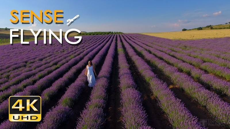 4K Sense of Flying - 1 Hour Relaxing Flight Scenes Soothing Guitar Music - UHD Aerial Drone Video
