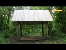 Летняя охота на кабана и косулю