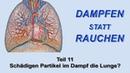 Dampfen statt Rauchen Teil 11 Schädigen Partikel im Dampf die Lunge