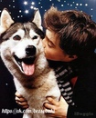 Настоящий хозяин любит свою собаку,такую какая она есть!