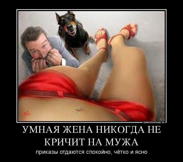 Впрочем, продажа машин в иркутске с фото что соседям, главный